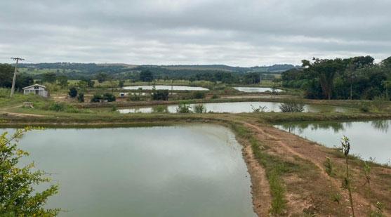 Licenciamento ambiental, piscicultura, na Distrito de Boa Vista município de Rondonópolis.